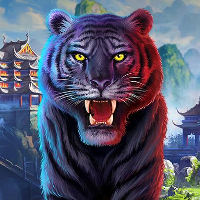 201911141449_TigerStacks-promopod-404x404.jpg