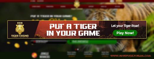 888 Tiger newsletter.jpg
