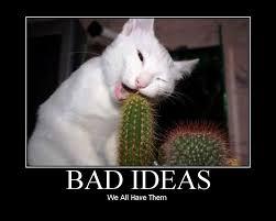 bad idea.jpg