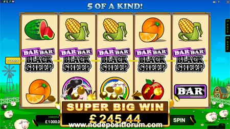 Bar Bar Black Sheep slot ndf.jpg