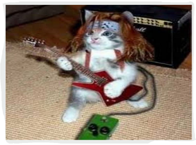 Capture.PNG kitty the rocker.PNG