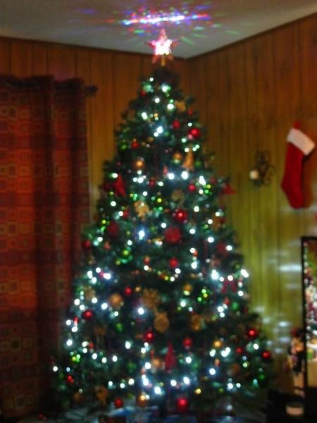 christmastree3.jpg