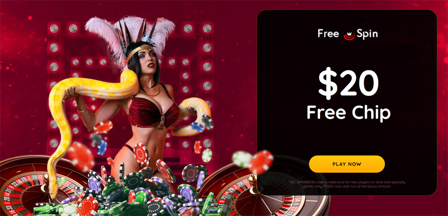 Free Spin Casino no deposit forum.jpg