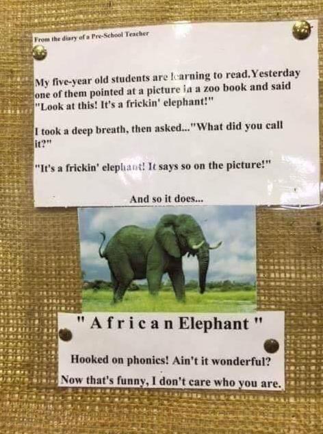 frickin elephant.png