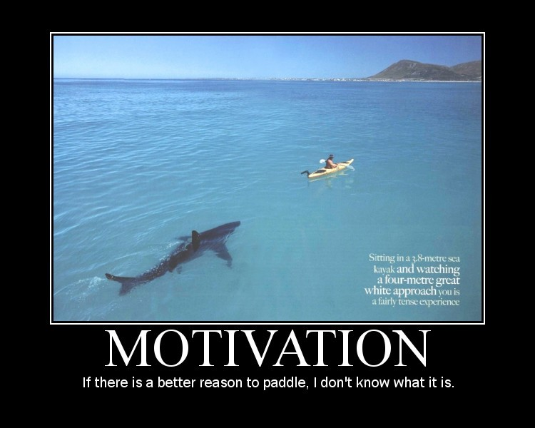 funny motivational quotes.jpg