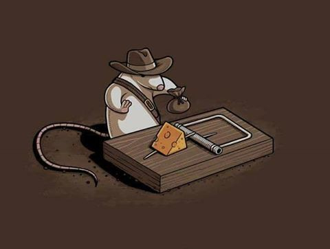 indiana mouse.jpg