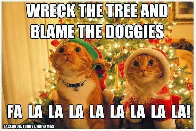 Kitty Christmas.jpg