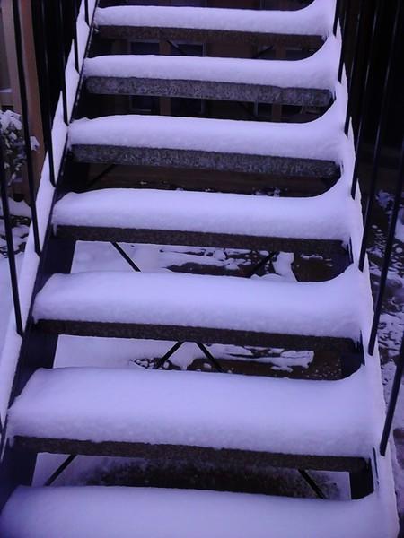 March_5th_snow_2015_d_ezgif-278560806.jpg