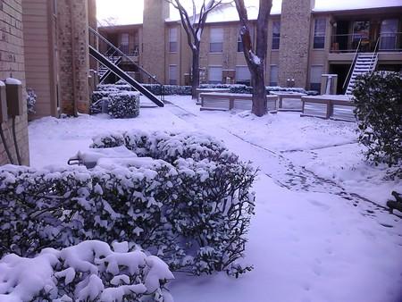 March_5th_snow_2015_ezgif-3728955754.jpg