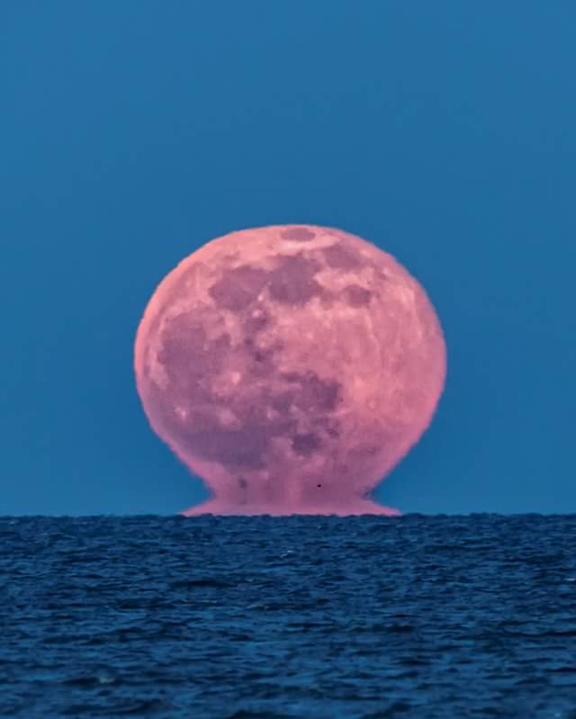 mooning.jpg