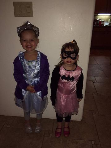Princess and Batgirl.png