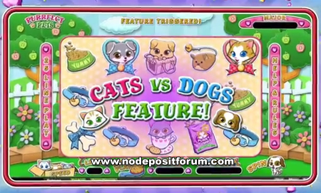 Purrfect Pets slot ndf.jpg