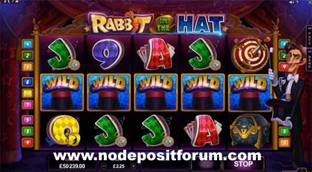 Rabbit In The Hat slot NDF.jpg