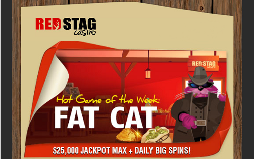 red stag casino fat cat no deposit forum.png