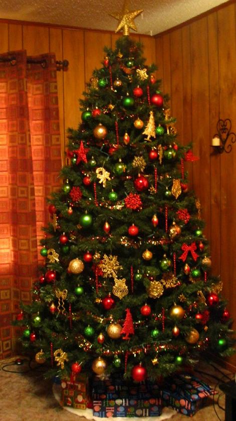 slotgal's tree.png