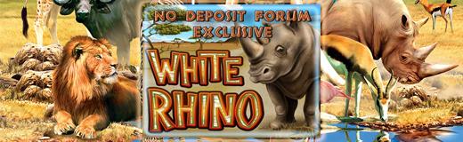 White Rhino newsletter.jpg